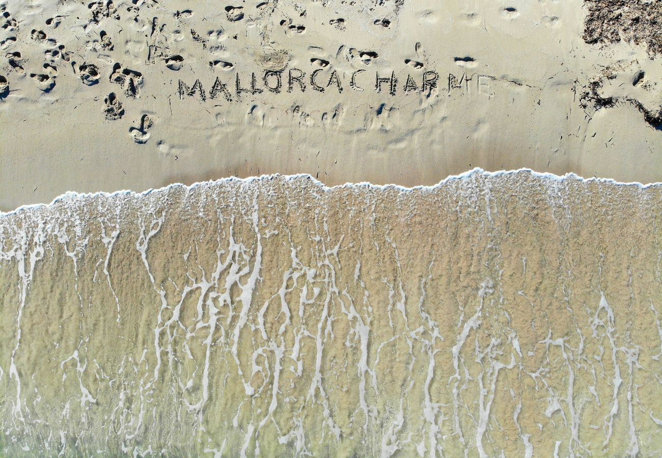 Fattoria a Muro - Can Butxaquí Muro finca 160